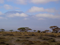 Mt. Kilimanjaro without Snow