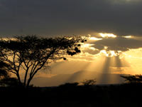 Samburu Sunset